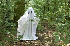 Fantasma en bosque Foto de archivo
