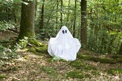 Fantasma en bosque Fotos de archivo