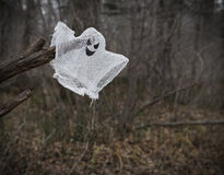 Fantasma en el bosque Foto de archivo