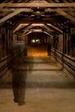 Fantasma en puente cubierto. Imagen de archivo libre de regalías