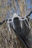 Fantasma macabro de Haloween foto de stock