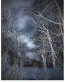 fantasmal Foto de archivo libre de regalías