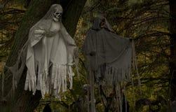 Fantasmas espeluznantes en los árboles Fotografía de archivo