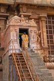 Fantast som skriver in en hinduisk relikskrin i Tamil Nadu Royaltyfria Bilder
