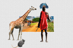 Fantastic Africa Royalty Free Stock Images