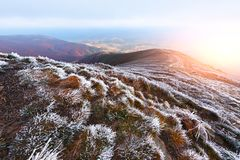 Autumn landscape with frost Stock Photos