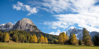 Fantastic autumn landscape with yellow larch on a background of. Mountains in the Dolomites. The Italian Alps. Meditation, anti-stress, relaxation - concept Royalty Free Stock Photos