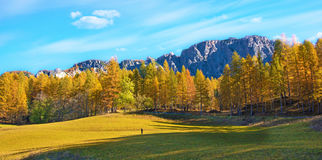 Fantastic autumn landscape with yellow larch on a background of. Mountains in a sunny day. Dolomites, South Tyrol, Alps, Italy. Meditation, rest, calm, anti Stock Photography