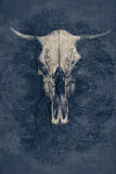 Fantastic background, a bull`s skull with horns royalty free stock photos