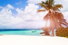 Fantastic beautiful beach on the island reside on the Maldives.  Royalty Free Stock Photo
