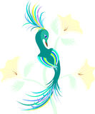 Fantastic birdie in colors. Royalty Free Stock Photography