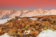Fantastic colorful sunset and winter landscape in the mountains Royalty Free Stock Photography