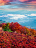 Fantastic colors autumn landscape in the Carpathian mountains. Royalty Free Stock Photos