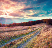 Fantastic colors autumn landscape in the Carpathian mountains. Stock Image