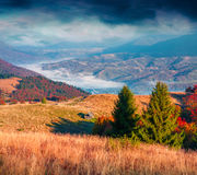 Fantastic colors autumn landscape in the Carpathian mountains Stock Image