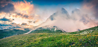 Fantastic colors summer panorama in the National Park Tre Cime d Royalty Free Stock Images