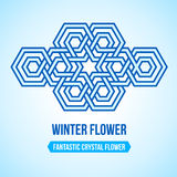 Fantastic crystal flower icon Royalty Free Stock Images