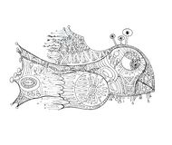 Fantastic fish drawn with black liner on white paper stock illustration