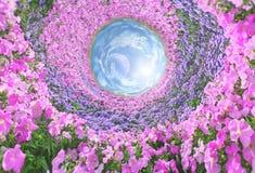 Fantastic floral passage Stock Image