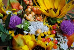 Fantastic flowers and berries Royalty Free Stock Photography