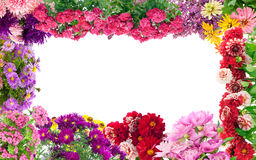 Fantastic flowers frame Royalty Free Stock Photos