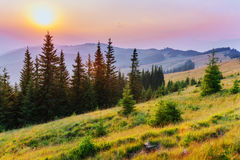 Fantastic foggy day and bright hills by sunlight. Stock Photo