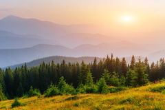 Fantastic foggy day and bright hills by sunlight. Stock Image