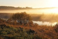 Misty nature landscape on early autumn morning. Russia. stock photos