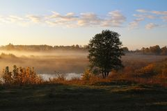 Misty nature landscape on early autumn morning. Russia. stock image