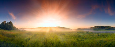 Fantastic foggy river with fresh green grass in the sunlight. Stock Images