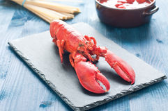 Fantastic and fresh lobster ready to be cooked Royalty Free Stock Photo