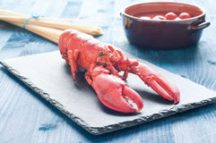 Fantastic and fresh lobster ready to be cooked Royalty Free Stock Images