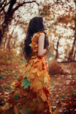Fantastic girl in the autumn forest Royalty Free Stock Images