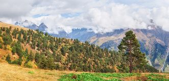 Fantastic golden autumn landscape between the rocky mountains in Georgia. Malvnychi snow-capped peaks Royalty Free Stock Photo