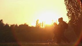 Fantastic golden sunset in summer park, woman walking funny dog on the leash stock footage