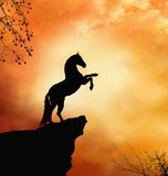 Fantastic horse. In the top of the mountain vector illustration