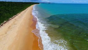Caraíva, Bahia, Brazil: Aerial view of a beautiful beach with two colors of water. stock video footage