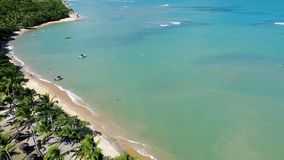 Trancoso, Bahia, Brazil: Aerial view of a beautiful beach with two colors of water. stock footage