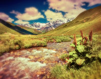 Fantastic landscape with a river in the mountains. Royalty Free Stock Images