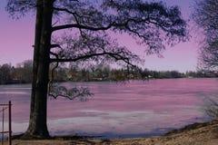 Fairy tale, spring, ice, river, coast, fable, fantastic, SPb. Fantastic landscape of spring. Neva coast, St. Petersburg. fantasy royalty free stock photo