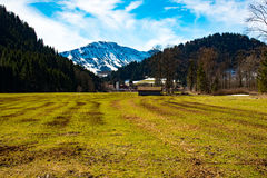 Fantastic meadow and mountain in spring - germany Royalty Free Stock Photos