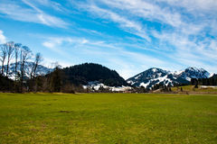 Fantastic meadow and mountain in spring - germany Royalty Free Stock Photography