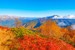 Fantastic mountain tops at autumn evening time. Stock Image