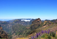 Fantastic Mountain View in Madeira Stock Photography