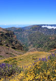 Fantastic Mountain View in Madeira Stock Images
