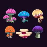 Fantastic Mushrooms Set Royalty Free Stock Photos