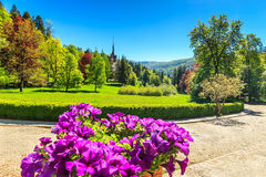 Fantastic ornamental garden and palace,Peles castle,Sinaia,Romania,Europe Royalty Free Stock Image