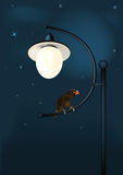 fantastic parrot at night Royalty Free Stock Photo