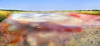 Fantastic picture of red pollution lake Royalty Free Stock Photography
