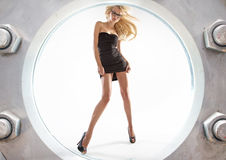 Fantastic picture of sexy blonde Royalty Free Stock Photo